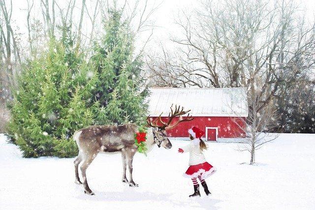sob o vánocích