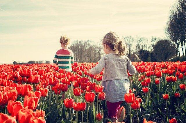 děti a tulipány