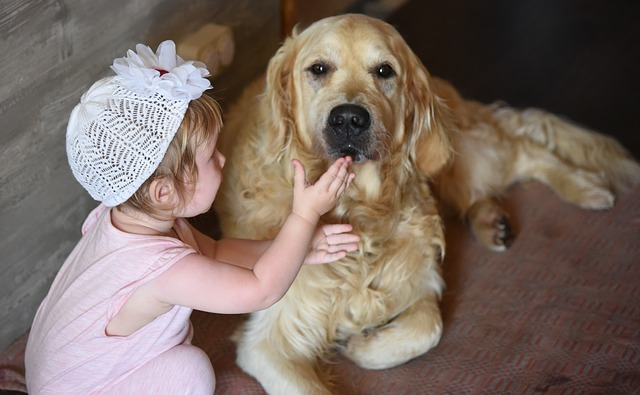 holčička a pes